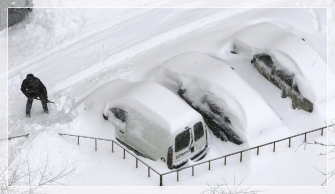 SchneeKievcats
