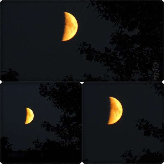MoonCollag