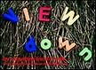 viewdownAmini108