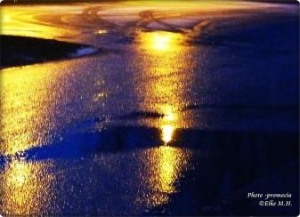 Licht im Regen