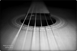 Gitar1SW