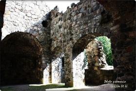 IMG 0036 - Sigtuna St Olofs kyrkoruin (Kirchen Ruine)_1024