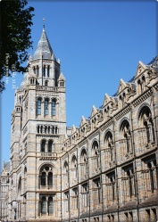 London- Natural History Museum