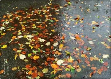 Nass im Herbst