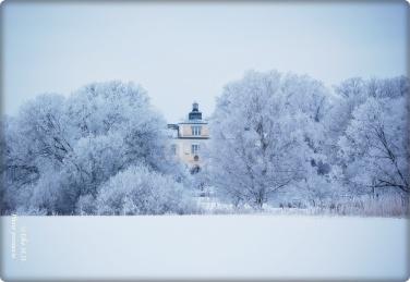 Blick aufs Haga Schloss zwischen den Bäumen